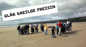 Schools Programme at Freedom Surf School Tramore